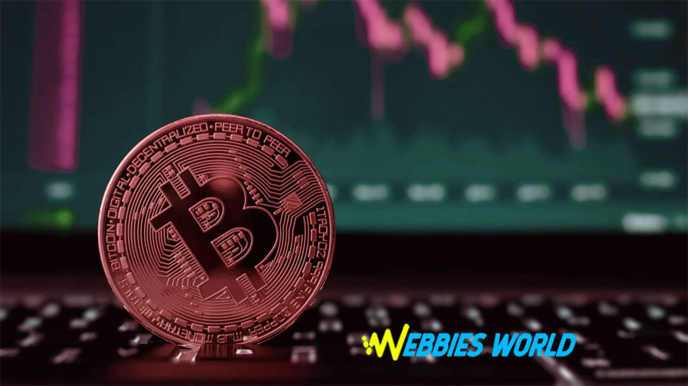 Bitcoins: Meaning and Reasons of value dropped!!!!